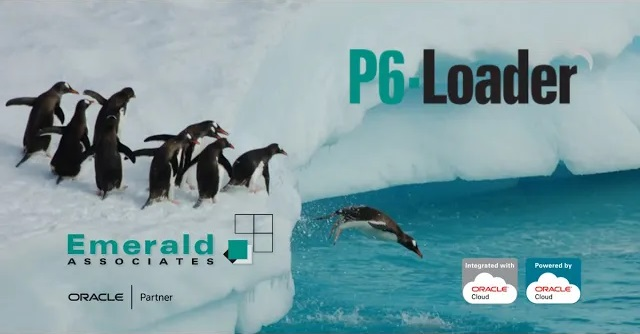 P6-Loader: Usage Sheets